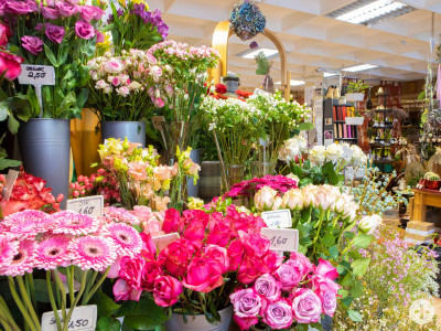 HP Birgits Blumenb. Frischblumen